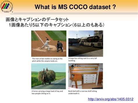 MS COCO Dataset Introduction